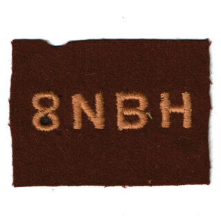 8th NBH Division Patch